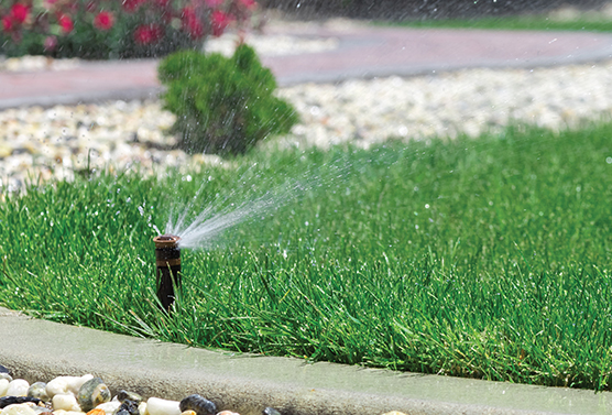 Five Reasons to Install a Smart Irrigation Controller